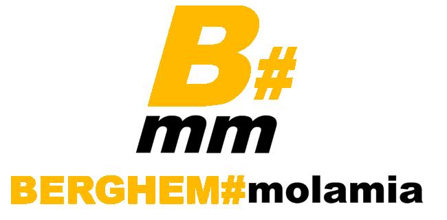 B#mm per sfondo bianco con sfondo trasparente in png piccolo per logo sito_5